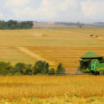Paraná deve produzir 24 milhões de toneladas na safra de verão